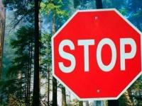 С 25 июля 2018 г. введено ограничение на пребывание граждан в лесах!