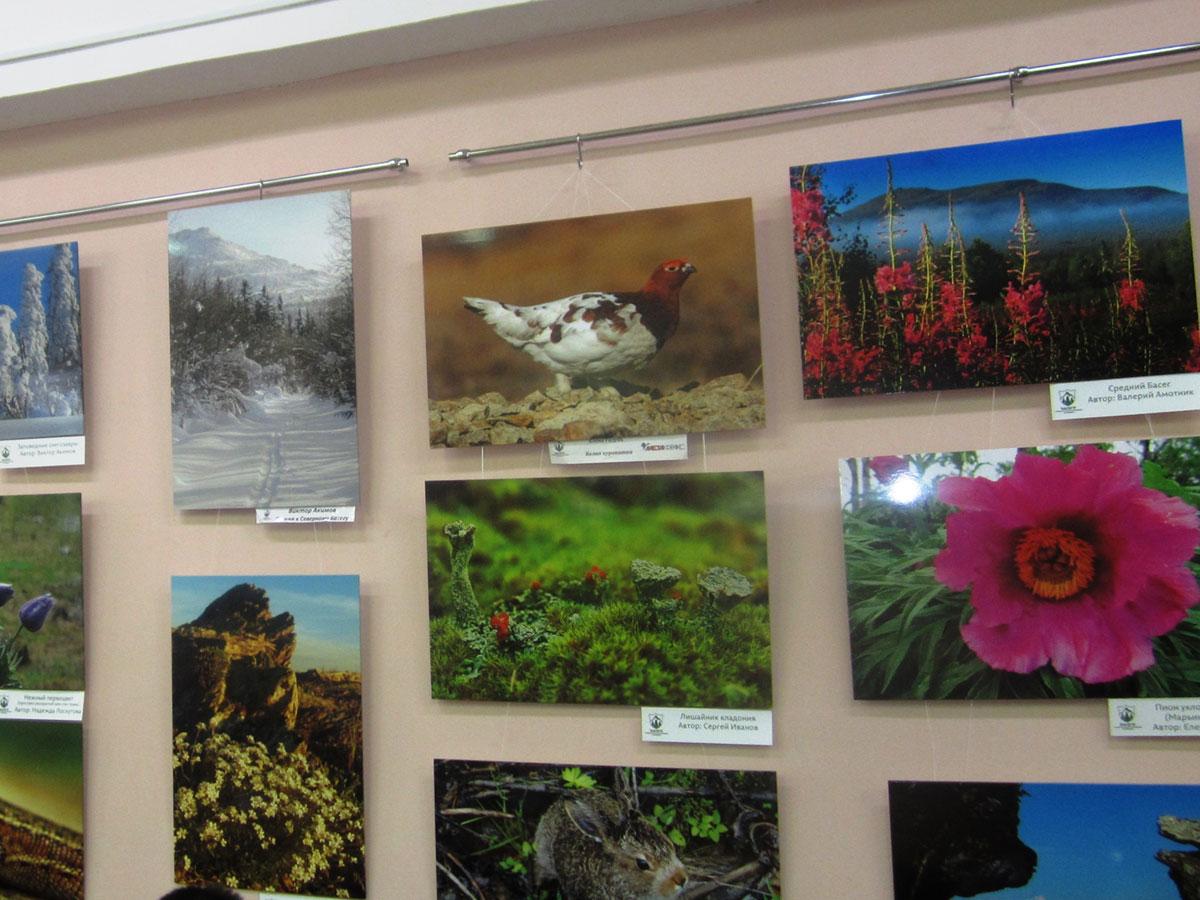 В ПГНИУ работает выставка фотокартин «Басеги заповедные»