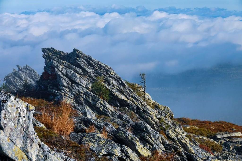В заповедных горах. Автор - Лев Арамилев